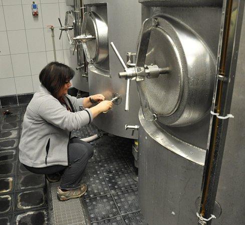 VTeplicích vaří pivo, po čtyřiceti letech