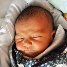 Daniel Horváth se narodil  Michaele Horváthové z Novosedlic 31. března  ve 4.34 hod. v teplické porodnici. Měřil  46 cm a vážil 2,90 kg.