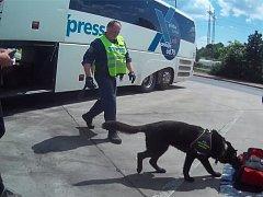U cestujícího v linkovém autobusu z Prahy do Teplic objevili celníci s pomocí služebního psa drogy.