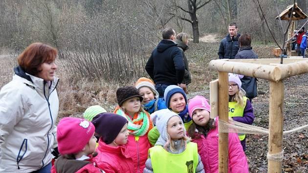 Na hráz rybníku Margarinka vysadili alej ovocných stromů