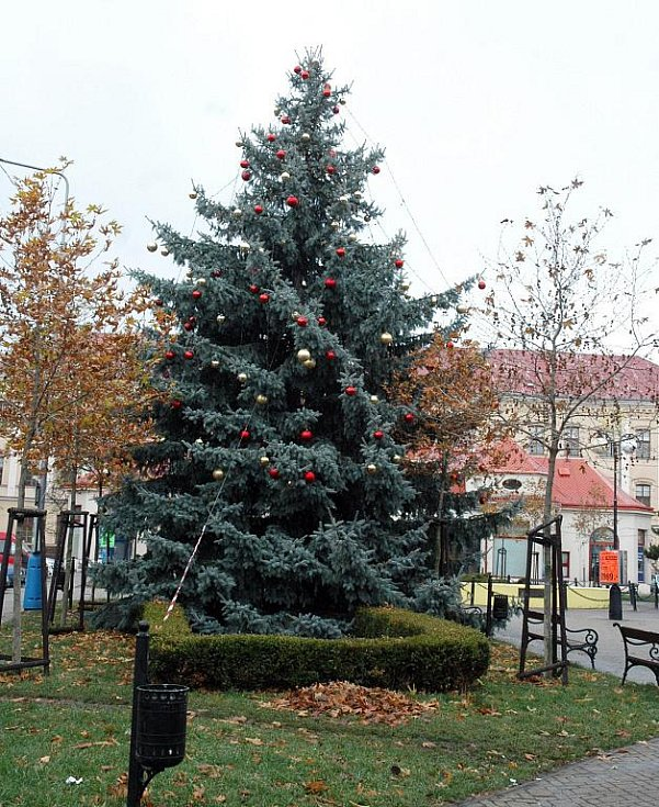 Vánoční strom na náměstí E. Beneše v Teplicích