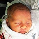 DAVID JANOUŠEK se narodil Veronice Janouškové z Bíliny 7. listopadu ve 13.30 hod. v teplické porodnici. Měřil 51 cm a vážil 3,50 kg.