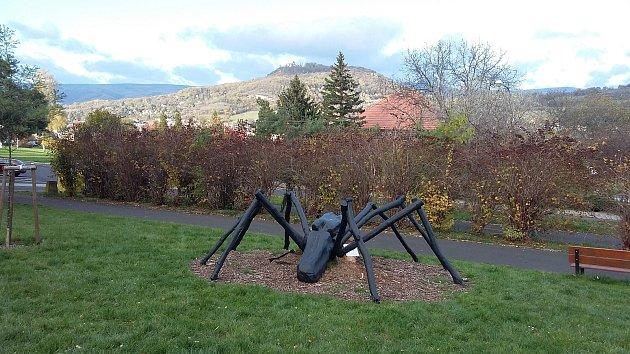 Starý nemocný akát se proměnil v pavouka