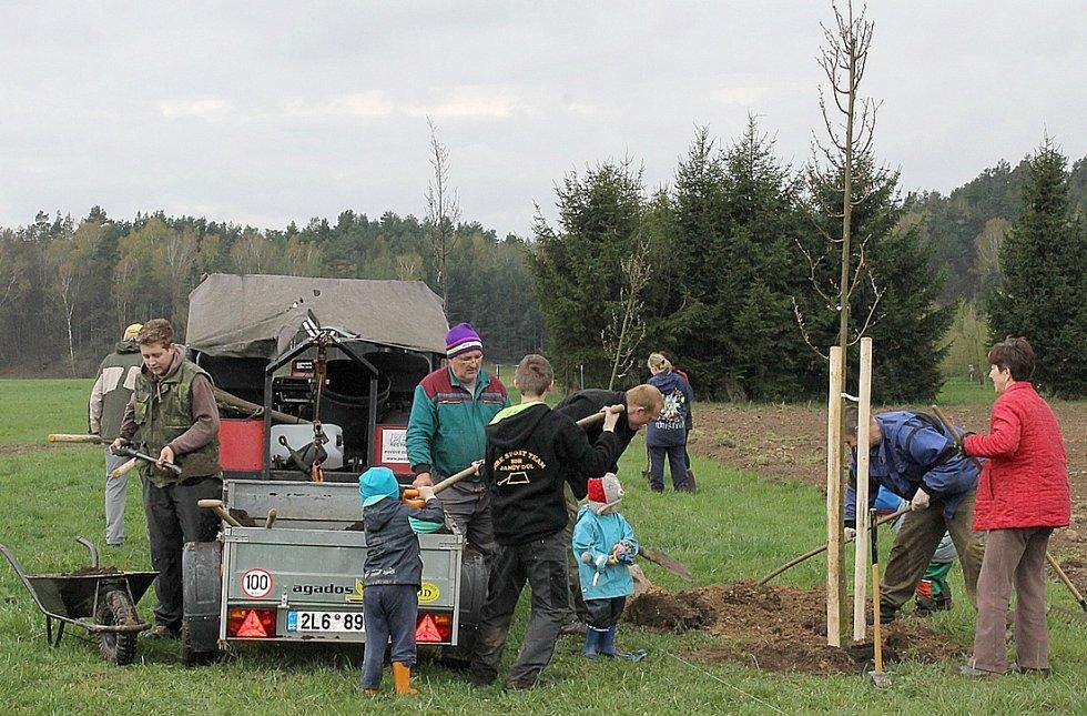 V  severních Čechách se bude na podzim sázet ve velkém.