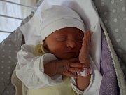 Nikola Malá se narodila Barboře Malé z Teplic  17. května  ve 12.36  hod. v ústecké porodnici. Měřila 44 cm a vážila 2,48 kg.