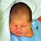 Jiří Šašek se narodil Lucii Kamenské z Bíliny 15. července  v 16.49 hod. v teplické porodnici. Měřil 54 cm a vážil 4,7 kg.