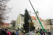 Do Teplic navážejí vánoční stromy, bude jich celkem sedm