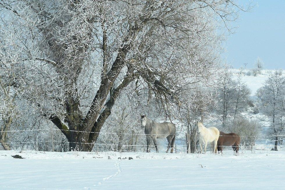 Bžany a přilehlé vsi v zimě.