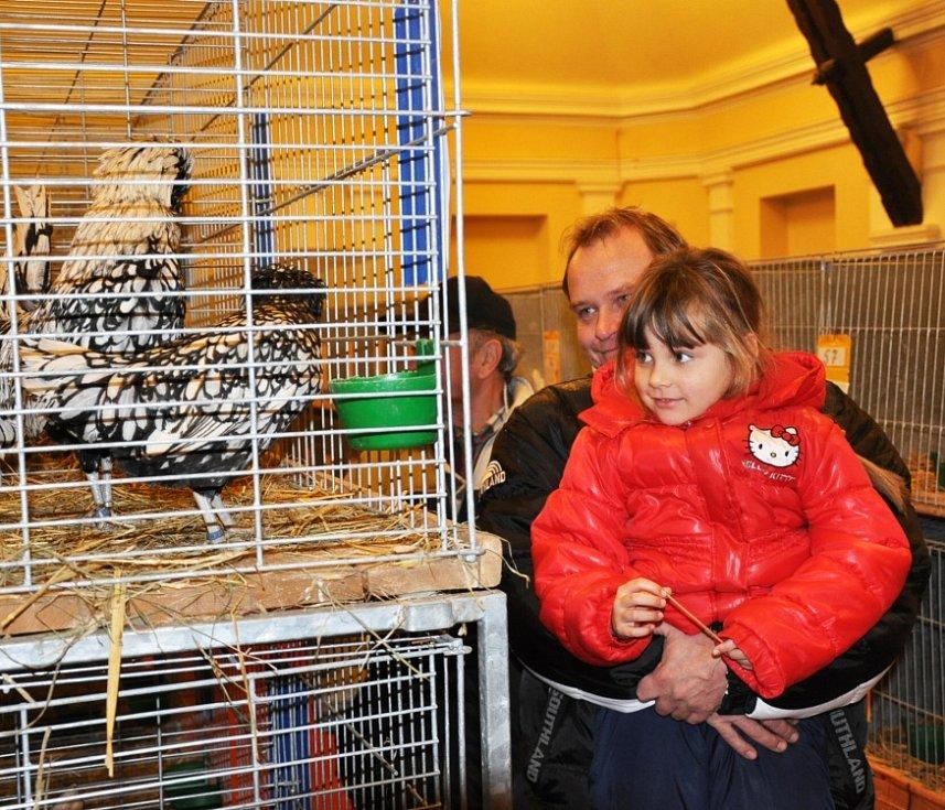 Králíkáři se sjeli na výstavu  ke kapličce do Žalan