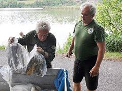 Na rybníku v Malhosticích uhynuly ryby, kvůli nedostatku kyslíku v důsledku dlouhých veder.