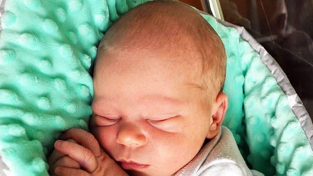 Pavel Jarosil se narodil Kláře Jarosilové  z Teplic 24. září v 6,55 hodin v teplické porodnici. Měřil 50 cm, vážil 3,70 kg.