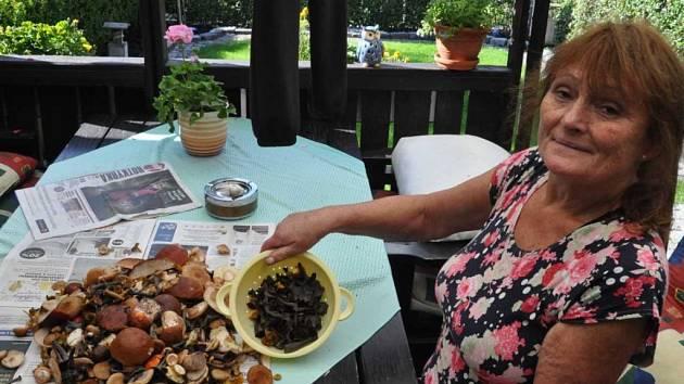 Čtenářka ve Švédsku nasbírala plný košík hub hned za domem.