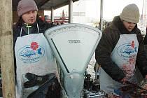 Prodejci kaprů u Kauflandu v Teplicích