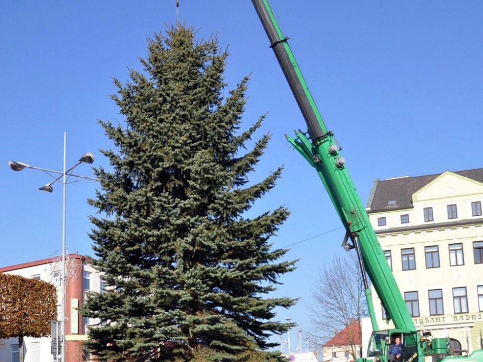 Vánoční smrk přivezli do Teplic z Černčic
