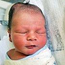 Ondřej Šesták se narodil Nikole Moravcové z Duchcova 15. května  ve 23.58  hod. v teplické porodnici. Měřil 51 cm a vážil 3,45 kg.