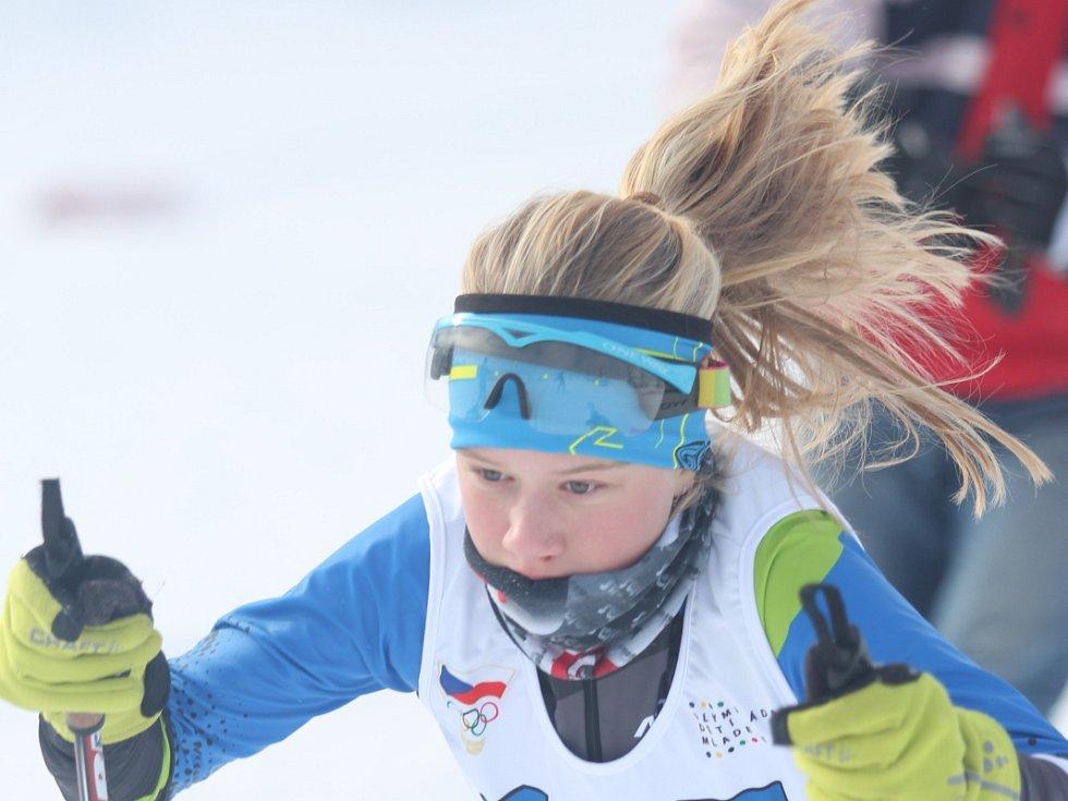 Zimní olympiáda dětí a mládeže na Cínovci