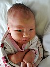Ema Mlinařičová se narodila Martině Jirsové z Teplic 14. dubna v 21:34 hodin v teplické porodnici. Měřila 52 cm, vážila 3,45 kg.