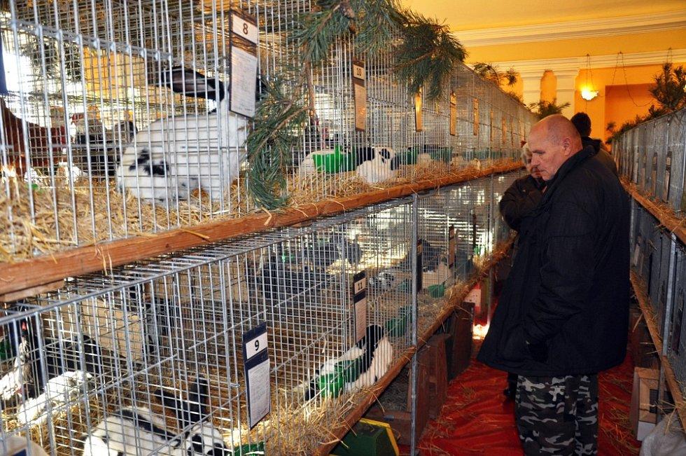 Chovatelé vystavovali v Žalanech počtrnácté
