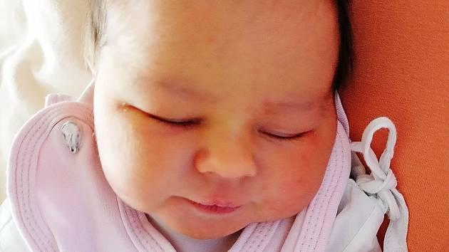 Anna Habartová se narodila Janě Habartové a Martinu Lísalovi 3. listopadu  v ústecké  porodnici. Měřila 49 cm, vážila 3,41 kg.