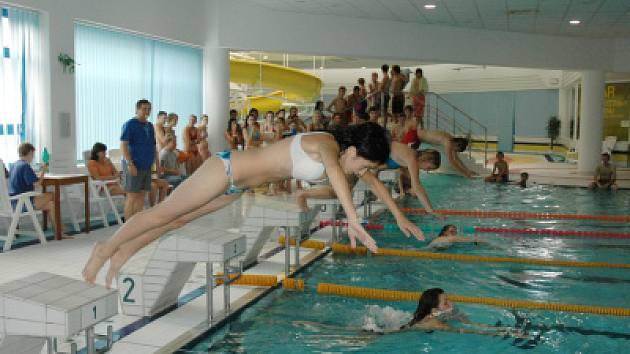 Plavání