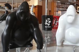 Gorilí samec dostal porcelánovou sošku.