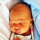 MATĚJ NOVÁK se narodil Nikole Hrabákové ze Mstišova 4. února ve 12.56 hod. v teplické porodnici. Měřil 53 cm a vážil 4,05 kg.