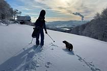 Na kopec se sněžnicemi a dolů na snowboardistu. Společnost mu dělá fena Maggie.
