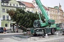 Ve středu 11. listopadu přivezli do Teplic největší ze sedmi vánočních stromů, které budou letos svítit v různých čtvrtích lázeňského města.