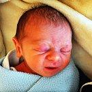 Ladislav Novák se narodil Michaele Kučabové z Krupky 4. prosince v teplické porodnici v 11,06 hodin. Měřil 44 cm, vážil 2,13 kg.