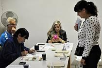 Volby/ ilustrační foto