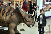 DinoPark Tour 2015