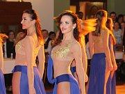 Reprezentační ples města Teplice