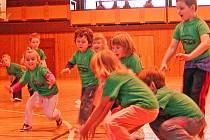 Školská zařízení se snaží děti vést ke sportu už od útlého věku. Źáčci všech pěti zařízení Mateřské školy v Domažlicích v průběhu podzimu například bojují o putovní pohár ANS Střech v blastbalu v domažlické sportovní hale