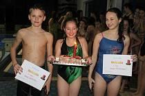 Vánoční svíčka 2014 - oddílový závod plavců Jiskry Domažlice.