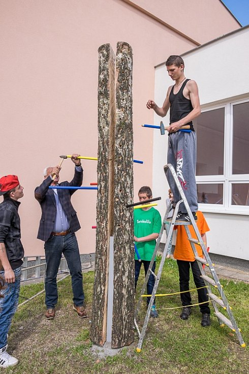 Strom přání v ZŠ Praktické v Domažlicích.