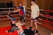 Z tréninku thajského boxu ve staňkovské sokolovně.