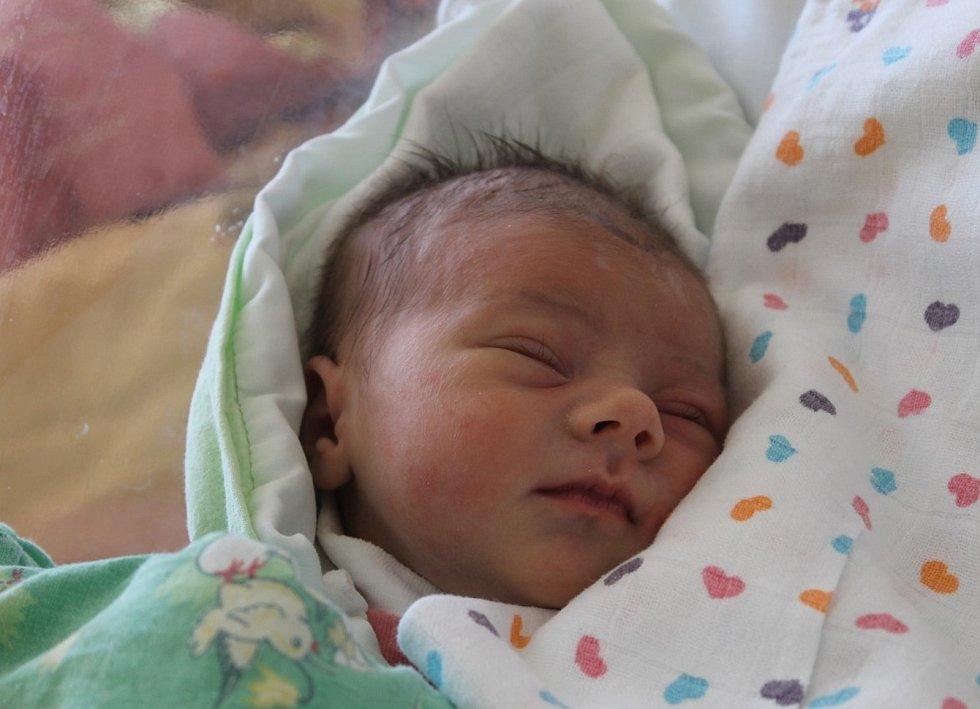 Klárka Plasová z Domažlic se narodila v Domažlické nemocnici 21. července (2900 g, 47 cm) Janě Plasové a Václavu Plasovi. Pro svoji prvorozenou dcerku vybírali jméno společně.
