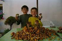 Petr a Ondra jsou vášnivými houbaři. Na nedostatek hub si letos nemohou stěžovat.