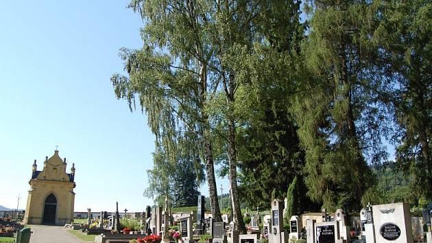 Vandal neušetřil ani břízu na hřbitově.