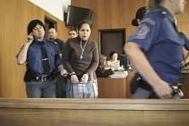 Soud znojemských Romů, obviněných z krádeže a porušování domovní svobody.