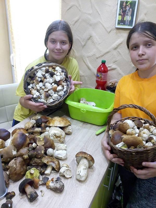 Nalezené houby zaslali:Lenka Svagrová