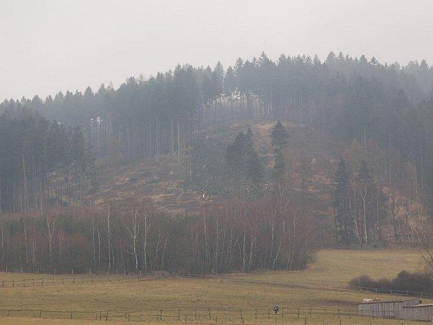 Po lese v Brnířově zbyla jen holá seč.
