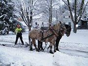 Prohrnování sněhu pluhem taženým koňmi.