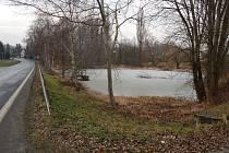 Panský rybník v Domažlicích.