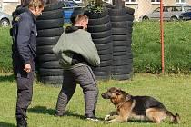 Z krajského policejního přeboru psovodů