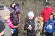 Akce Děti a zvířátka v lese