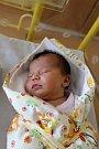 Dorota Byrtusová z Holýšova se narodila v domažlické porodnici 18. února ve 14:52 s váhou 3 460 gramů a 51 centimetry.