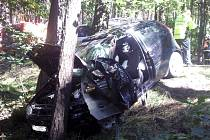 Řidiče Fiatu Punto z Dobřan zastavil u Mířkova strom. Byl vrtulníkem transportován do nemocnice v Plzni.