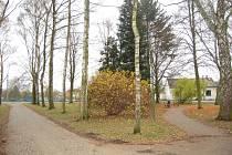 Park v Kolovči.