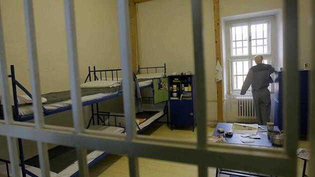 ZLODĚJ recidivista skončil za mřížemi.